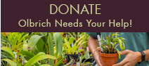 Donate to the Olbrich Botanical Society - Learning Center & Greenhouses