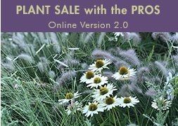 Plant Sale with the Pros - Online Version 2.0