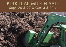 Fall Bulk Mulch Sale