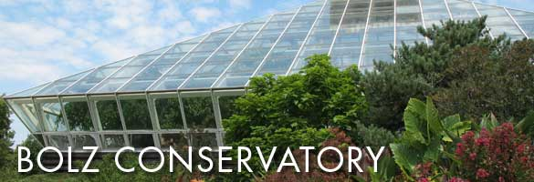 bolz conservatory mimics a tropical rainforest