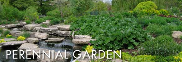 perennial garden's beautiful water feature