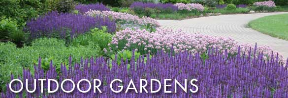 Olbrich's spectacular outdoor gardens